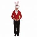 Costume lapin alice au pays des merveilles pour garçon