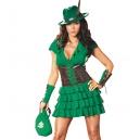 Costume Robin des Boisavec la bourse