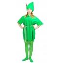 Costume Peter Pan
